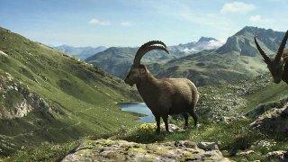Zomer in Zwitserland - Graubünden